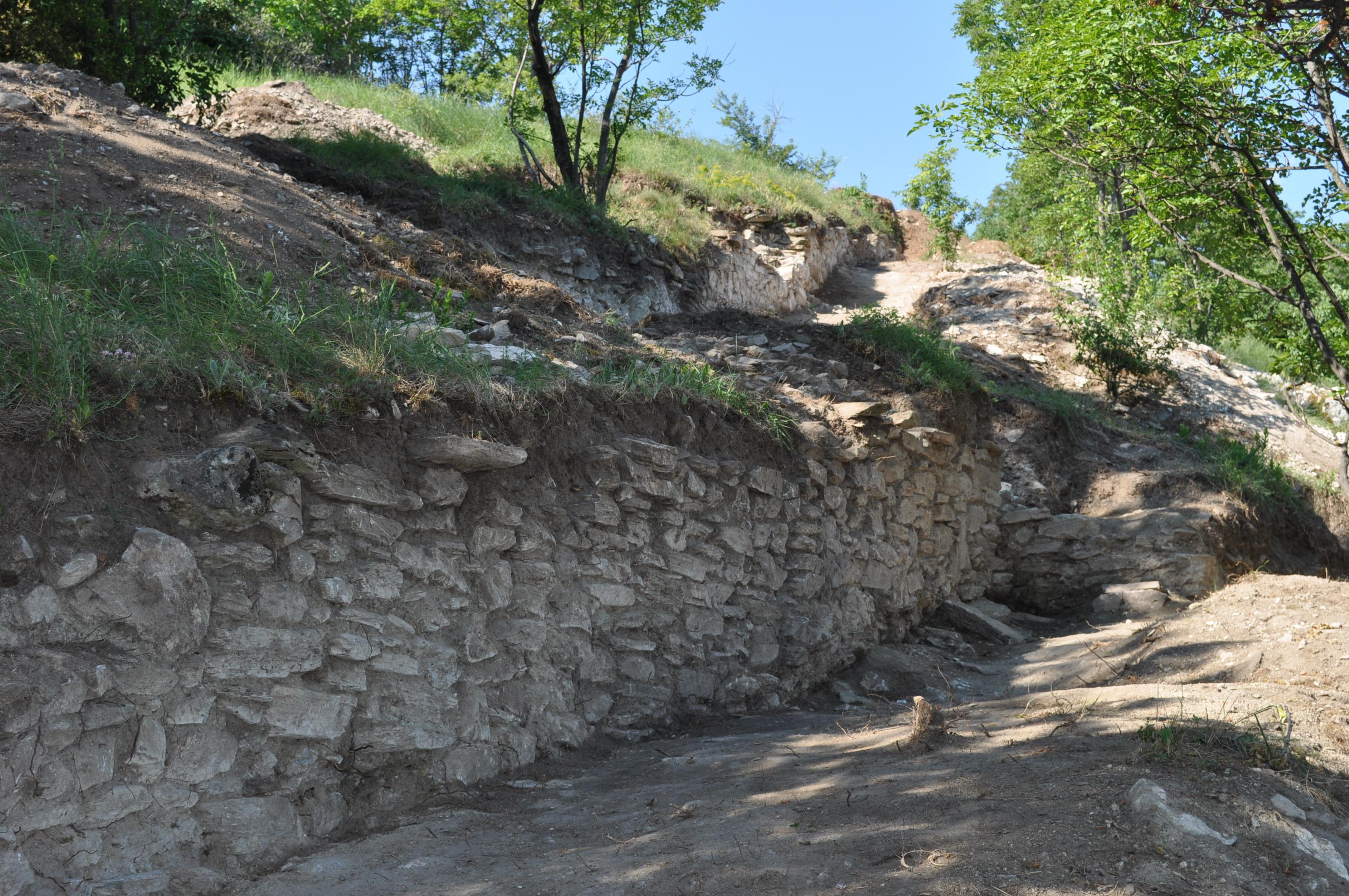 Markovi Kuli Vodno