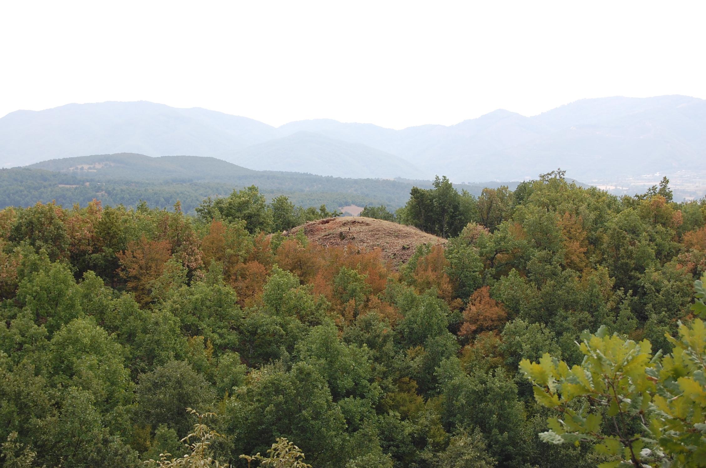 Manastir, Gabrevci